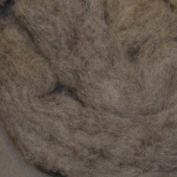 Black Welsh Mountain (Rustic Roving)