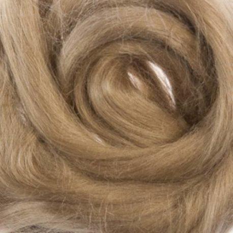 FTED-Ram-Eart.jpg